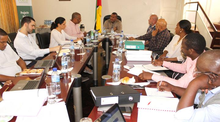 Principais realizações do FCID
